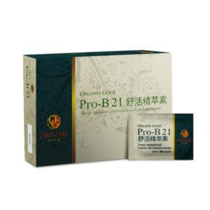 ProB 21_HK 600px