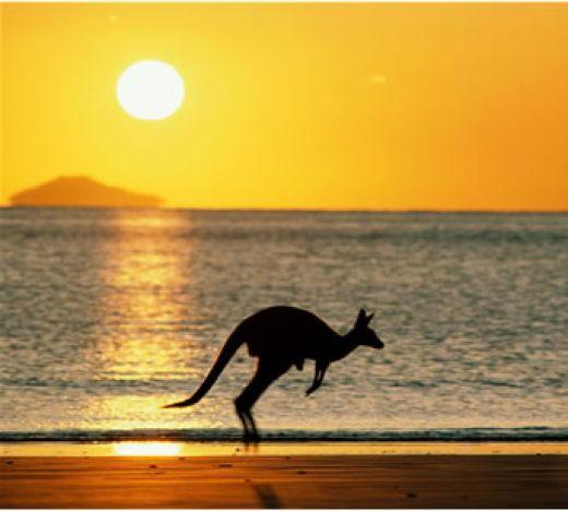Australia - OG