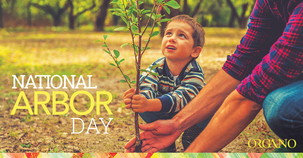 Arbor_Day_2016_1200x627_ENG