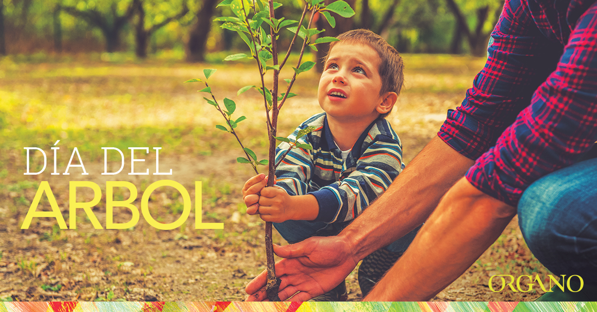 Arbor_Day_2016_1200x627_SPA