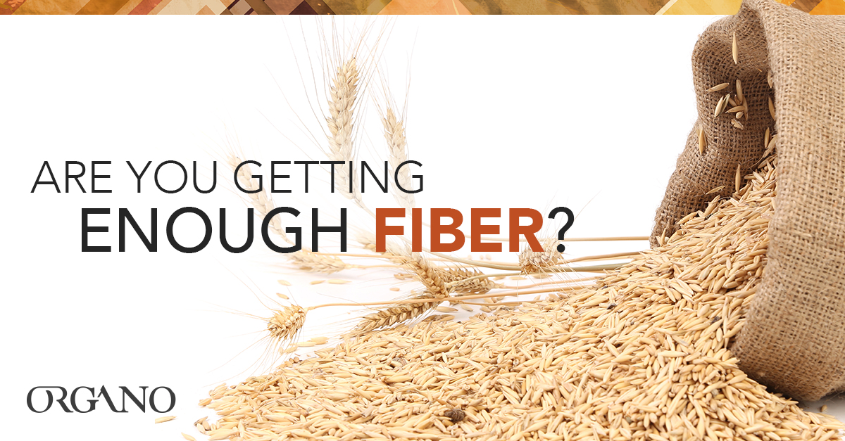 Are_you_getting_enough_Fiber_1200x627_ENG