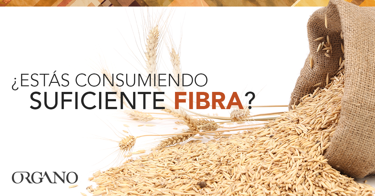 Are_you_getting_enough_Fiber_1200x627_SPA